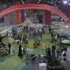 Адреналин 2008